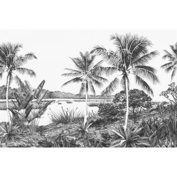 fototapet landskap med palmer svart och vitt